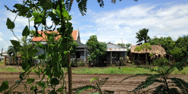 Bán đất huyện Cần Giuộc tỉnh Long An