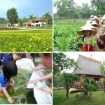 """Đất vườn Long An trong """"tầm ngắm"""" các Đại gia Sài Gòn"""