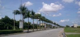 Khu Dân Cư Cầu Cảng- huyện Cần Đước